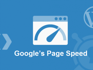 Google Page Speed Standard