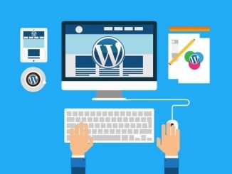 How to choose wordpress templates for web template